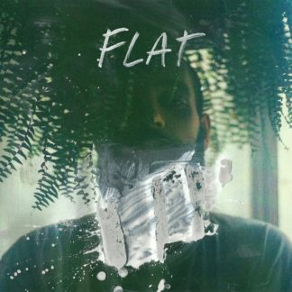 "Cover of the Better Leave Town ""FLAT"" LP. It's a portrait of a person behind a plant (ferny) and wall paint around his neck. The color seems to be on the picture, not in."