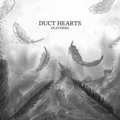 "Dusty looking cover of the Duct Hearts ""Feathers"" LP showing the band name and album title surrounded by feathers. Like after a fight."