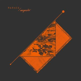 Cover of the Marais / Auszenseiter Split LP. It's an orange screenprint on black cardboard showing a diagonal cut that hold a picture of flowers. This picture is only half visible.