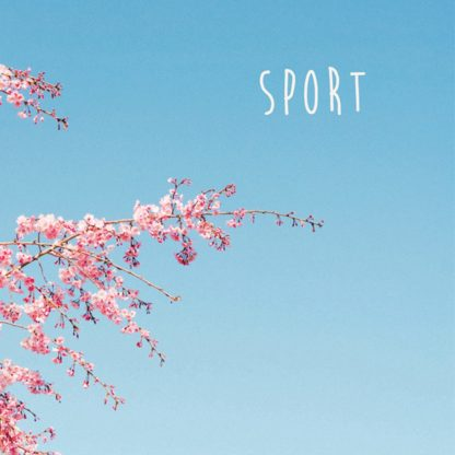 Cover of the Sport 2010-2019 Discography, showing a tree with pink blossoms in front of a clear blue spring / summer sky. Bandname is placed in the top right corner.
