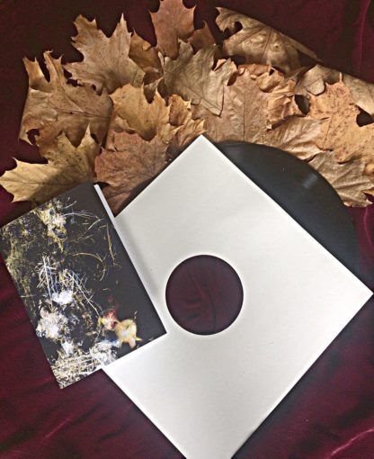 """Photo of the Laudare """"d.é.o.m.é"""" LP showing the record (slightly pulled out of the sleeve) and the lyric book arranged on red velvet and leaves"""